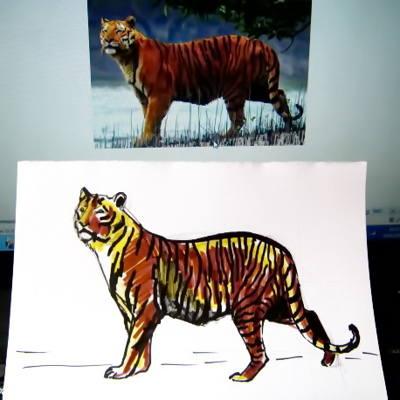 Lápiz de dibujo de tigre blanco en etapas. Cómo dibujar un tigre a ...
